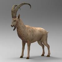 3dsmax mountain goat
