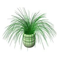 plant.3ds