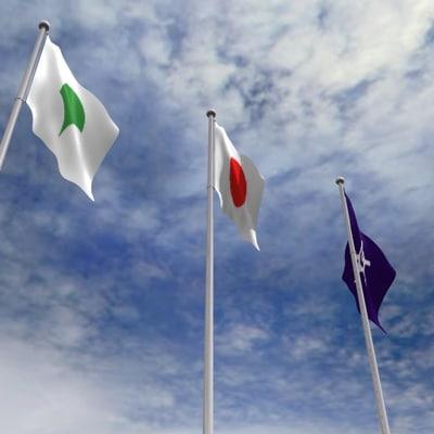 c4d flag pole