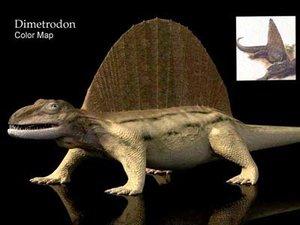 dimetrodon dinosaur max