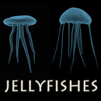 3d jellyfish jelly fish model