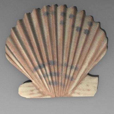 3d shell seashell