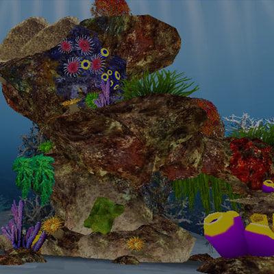 maya corall reef