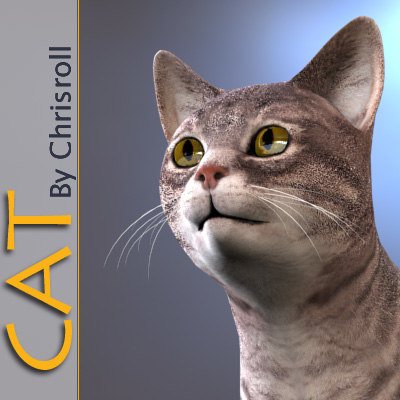 3d model cat animation