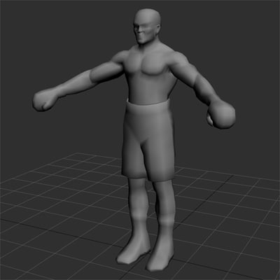 boxer boxing martial 3d max