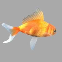 GoldFish.lwo