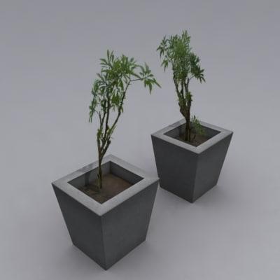 plants planters 3d max