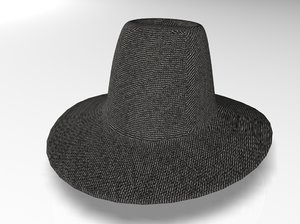 3d model of hat