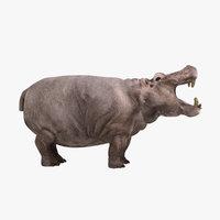 3dsmax realistic hippopotamus