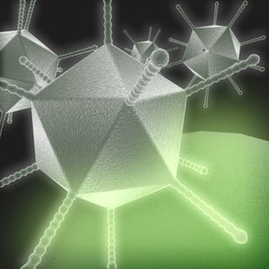 3ds max adenovirus disease cold