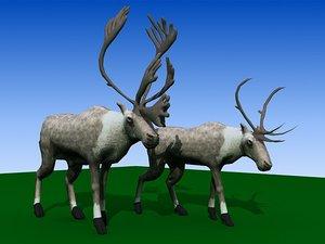 caribou couple 3d 3ds