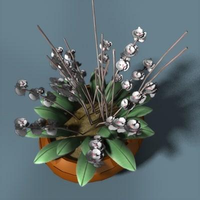 3d vase flowering orchid
