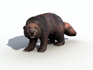 3d wild wolverine model