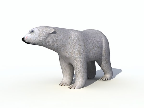 polar bear 3d obj