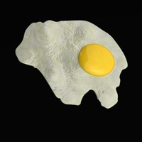 fried egg 3d lwo