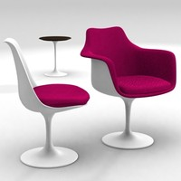 Tulip Chairs Armchairs and Tables ------------- Eero Saarinen - Knoll