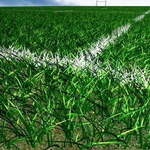 3d model rugby field grass