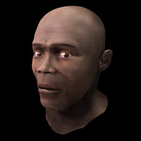 3d model of black male head