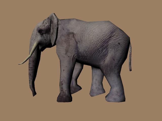 maya elephant animation