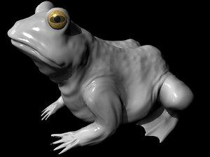 frog rocks water 3d model