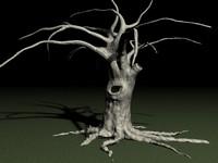 TREE.rar