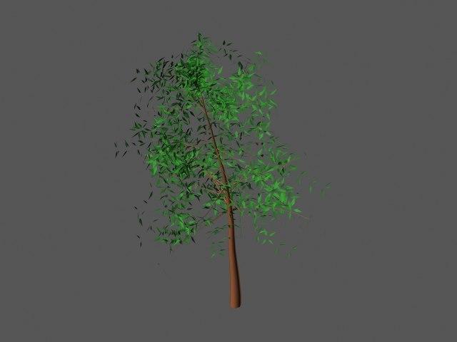 cherry tree max