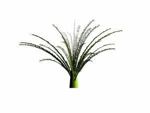 plants trees 3d model