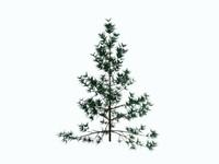 3dsmax trees