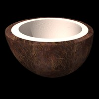 3d coco nut model