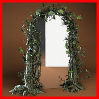 Overgrown mirror/frame.
