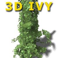 IVY ! on Columns