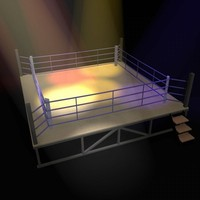 3d ring boxing model