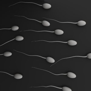3d sperms