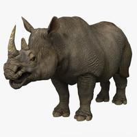 rhinoceros 3d max