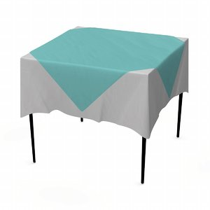 3d model table tableclothes