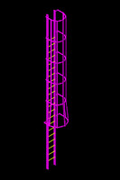 3d standard caged ladder