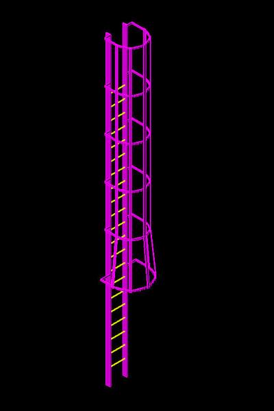 3d standard caged ladder