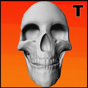 3d resolution skull model
