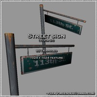 Street sign - 113th ( Urban model )