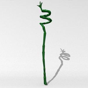 lucky bamboo 3d model