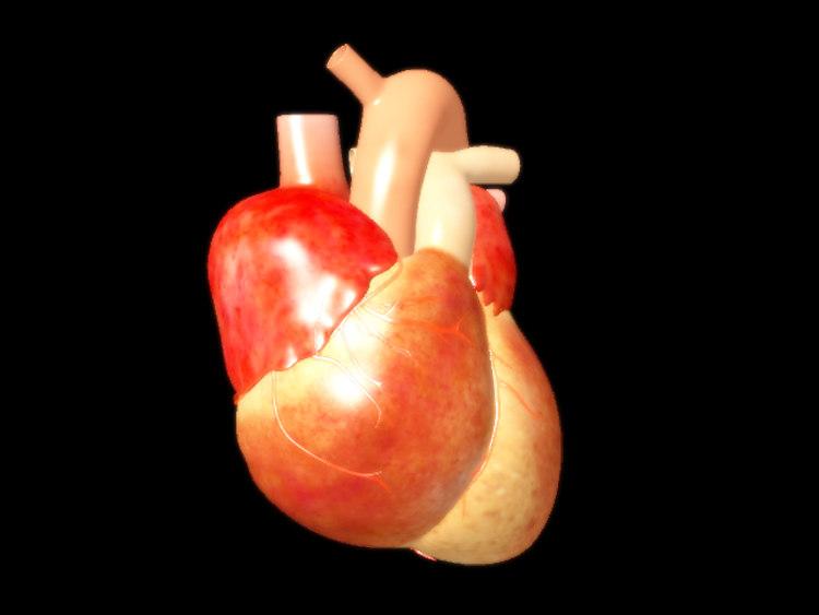 maya heart