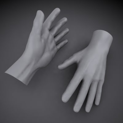 3d model male hand