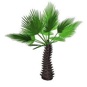 palm 3d 3ds