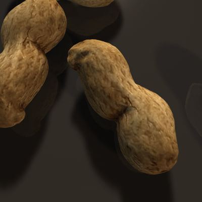 3d peanut nuts model