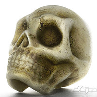 simple skull dxf