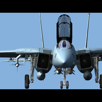 f-14a tomcat fighter 3d max