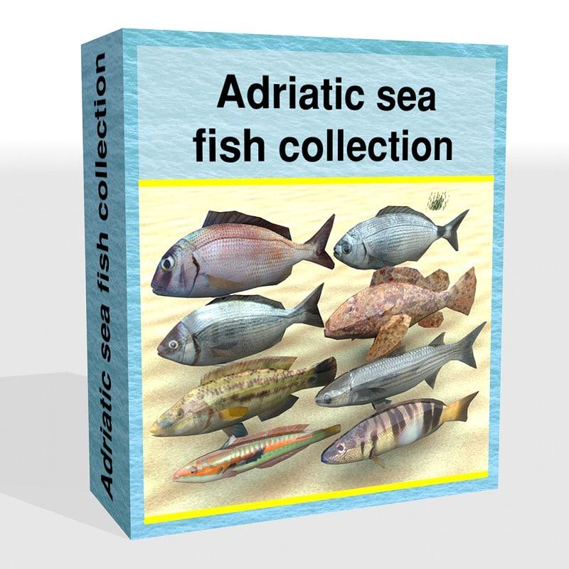 3ds max fish adriatic sea