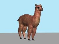 alpaca llama sheep 3d model
