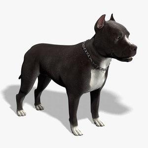 3d model pitbull pit bull