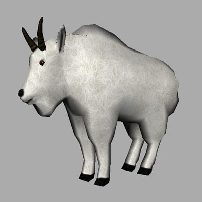 3d model mountain goat
